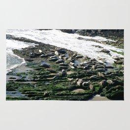 Seals Rug