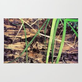 Rotting Wood & Grass Rug
