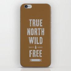 True North iPhone & iPod Skin