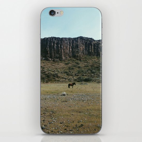 Rock Pasture Pony iPhone Skin