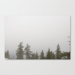 Fog Forest Canvas Print