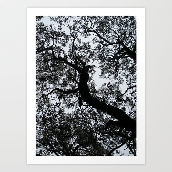 A Walk in the Clouds #3 Art Print