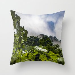 View through the Mist of the Cloud Forest in the Chocoyero-El Brujo Nature Reserve, Nicaragua Throw Pillow