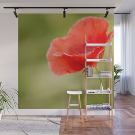 Miss you so much Red Poppy #decor #society6 Wall Mural