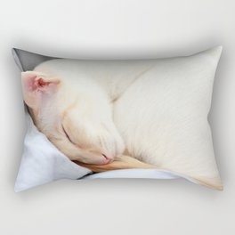Cat Nap Rectangular Pillow