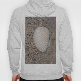 Sea shell on the beach Hoody