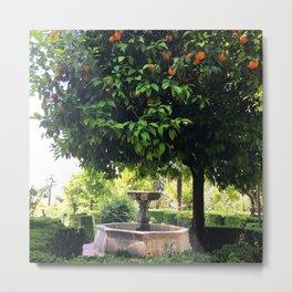 Spanish Gardens : Cordoba Andalucia Metal Print