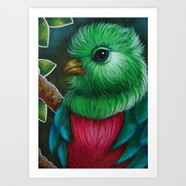 QUETZAL BIRD CLOSE UP PAINTING Art Print