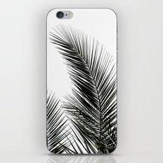 Palm Leaves iPhone & iPod Skin
