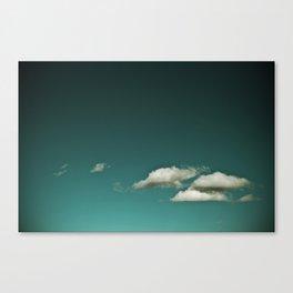Float. Canvas Print