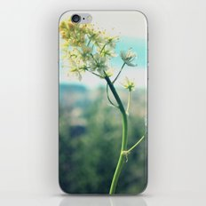 Buttercup Hikes iPhone & iPod Skin