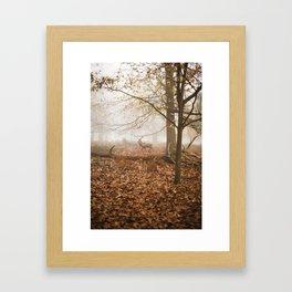 STAG#1 Framed Art Print