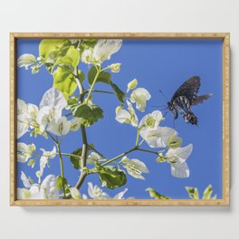 Pipevine Swallowtail Serving Tray