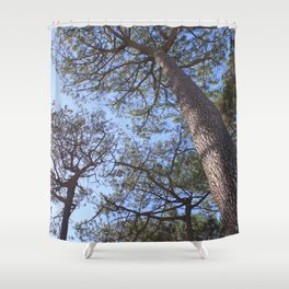 Forest 3 Shower Curtain