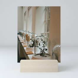 Botanical Scents on Display Mini Art Print