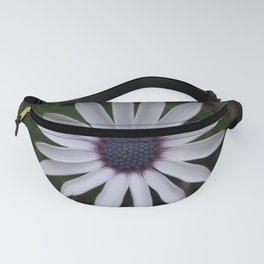 PERFECT WHITE CAPE DAISY FLOWER Fanny Pack