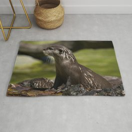 Otter Emerging From The Water Rug