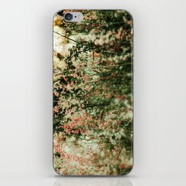 Flowers in the sun iPhone Skin