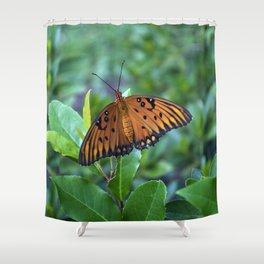GULF FRITILLARY Shower Curtain