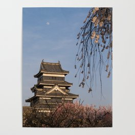 Matsumoto castle during Spring cherry blossom Poster