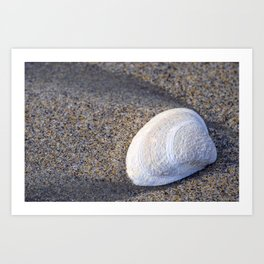 Beach Treasure Art Print