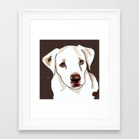 golden retriever Framed Art Prints featuring Golden retriever by Pendientera