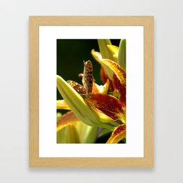 TT's Garden Framed Art Print