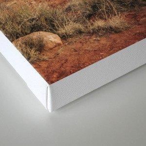 Desert Red Utah Rocks Canvas Print