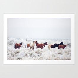 Winter Horseland Art Print