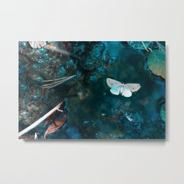 Moth & Trap Metal Print