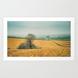 The field in autumn Art Print