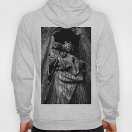 shot on iphone .. madonna & child Hoody