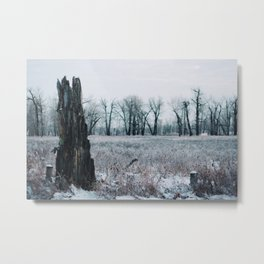 // a morning like any other    2 of 2 // Metal Print