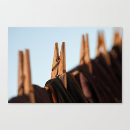 Washing line Canvas Print