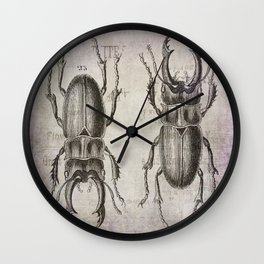 Grunge Style Stag Beetle Wall Clock