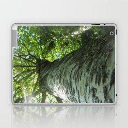 Sacred Birch by Mandy Ramsey, Haines, AK Laptop & iPad Skin