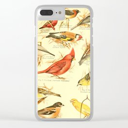 William Playne Pycraft - A Book of Birds (1908) - Plate 28: Some Perching- or Song-birds Clear iPhone Case