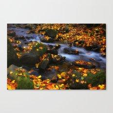 Autumn Flow Canvas Print