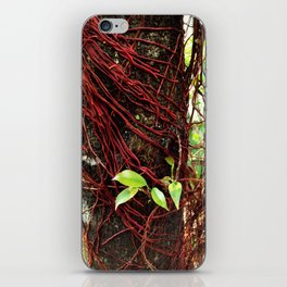 Intertwined iPhone Skin