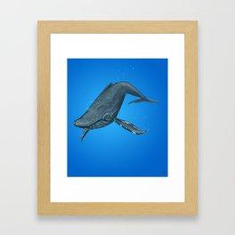 Humpback Whale Framed Art Print