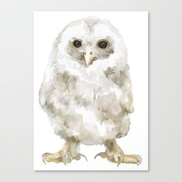 Baby Tawny Owl Watercolor Canvas Print