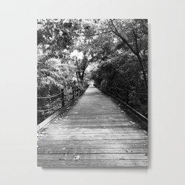 Mount Vernon Trail, Virginia Metal Print