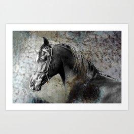 Pony Boy Art Print