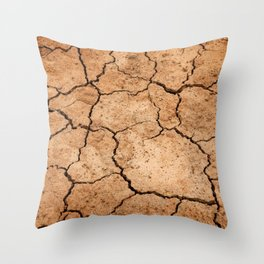 Photo of Cracked Earth Throw Pillow