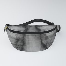 X-Ray Fanny Pack