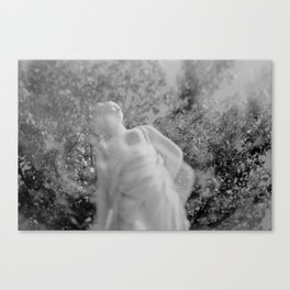 film photograph taken with crown graphic 4x5 camera Canvas Print