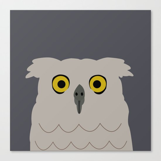 Wide Eyed Owl Canvas Print