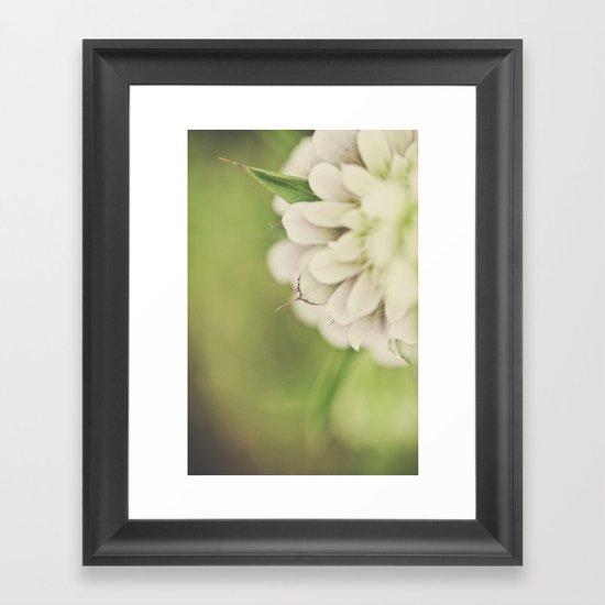 The beauty lies in the petals Framed Art Print