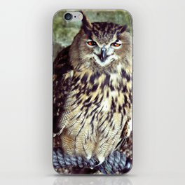 Happy Owl. iPhone Skin