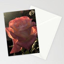 Sunset Roses Stationery Cards